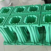 供应海绵城市雨水回收利用系统PP雨水收集模块