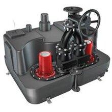 科赛尔密闭污水提升泵AqualiftFDuoXL双泵站200L