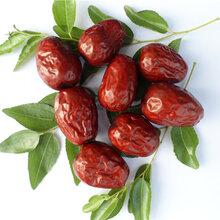 大型新疆红枣批发商价格低图片