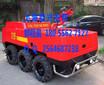 消防灭火机器人遥控式灭火机器人