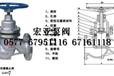 U41SM柱塞阀-柱塞阀-宏亚泵阀