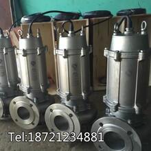 不锈钢液下提升潜水泵304铸造耐腐蚀不锈钢潜水泵价格图片