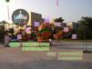 供应庙会游乐设备(DZY-50)大章鱼荥阳三星大型游乐设备厂家生产加工!