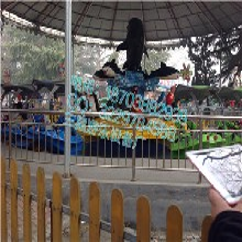 儿童游乐设备激战鲨鱼岛中型游乐设备鲨鱼岛公园生意火爆图片
