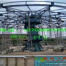 低价公园游乐设备/游乐场中型设备摇头飞椅厂家特价项目图片