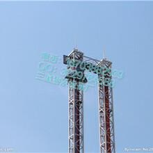 河南工厂直销大型游乐设备跳楼机/品牌大型游乐设备厂家供应图片