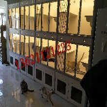 猫咪产房猫咪窝寄养笼散养多组合柜笼定做异性尺寸柜笼