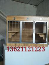 新款定做宠物柜笼孕育笼;相亲笼,田园组合式柜笼装修宠物店