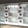 猫咪展示笼