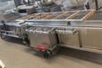 雞毛菜氣泡清洗機雞毛菜加工設備雞毛菜加工設備廠家