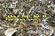 废金属回收,工厂废金属回收价格,东莞回收公司