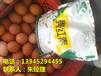 山东威海养殖场专用蛋鸡饲料添加剂改善蛋壳颜色