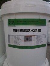 自闭树脂防水涂膜,环保型高性能防水涂料图片