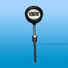 一体化无源显示表-上海辰心仪表厂家生产图片