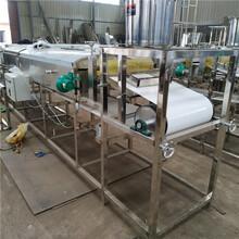天津多功能蒸氣涼皮機大型商用彩色涼皮機圓形面皮機廠家圖片