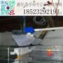 鹌鹑采食器养殖设备鹌鹑食槽鹌鹑料槽鹌鹑自动采食器图片