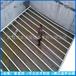 优质屠宰污水处理设备清泉环保