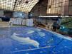 供应泳池马赛克专用玻璃马赛克图案定做