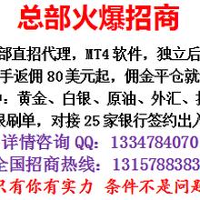 张氏金业现货平台代理返佣