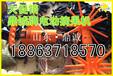 忻州专用手持式电动款摘果机,打果机厂家直销