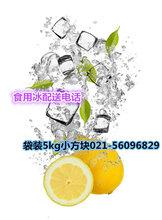 上海普陀区食用小冰块展会会展