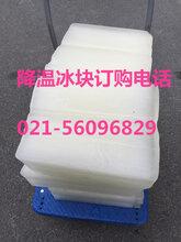 上海浦东新区食用小冰块配送