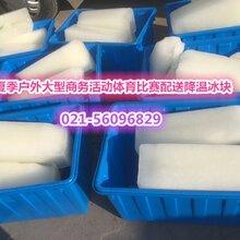 上海市食用小冰块销售部