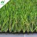 格林直销假草坪人工塑料草皮地毯仿真草坪绿植装饰人造草坪楼顶阳台G006-U型