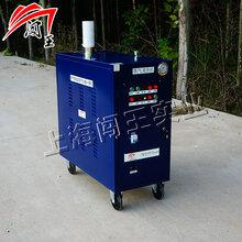 蒸汽清洗机,工业蒸汽清洗机,商用蒸汽清洗机,多功能蒸汽清洗机图片