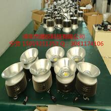 8寸LED筒灯图片
