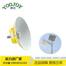 LED庭院灯80W价格图片