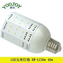 玉米灯50W60W54W36WLED玉米灯图片