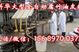 九江全自动腐竹机生产线,大型腐竹油皮机械设备,全自动豆油皮机器,腐竹机价格