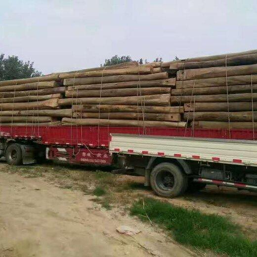 山東木材加工廠銷售老榆木大梁,懷化山東老榆木梁大量批發樣式優雅