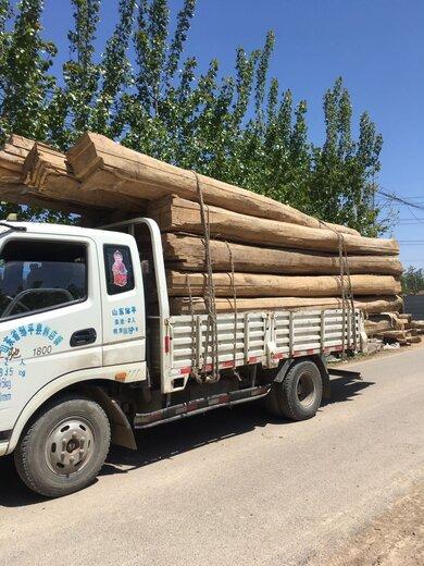 山東濟南百年老榆木供應老榆木,三門峽百年老榆木梁榆木方子批發廠家