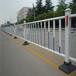 专业生产市政施工道路护栏
