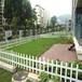 PVC护栏绿化园林草坪花坛护栏栅栏