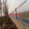 供应锌钢护栏铁艺围墙护栏小区围栏