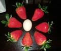 大棚草莓苗质优价廉