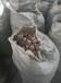 湖北省武汉市洪山区生物质压块颗粒燃料