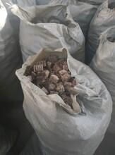 湖北省武汉市洪山区生物质压块颗粒燃料图片