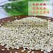 宁化糯薏米农家自产纯天然优质五谷杂粮新货搭红豆非蒲城贵州薏米
