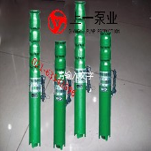 上海上一QJ深井潜水电泵图片