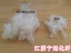 江阴涤纶短纤厂家