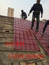杭州树脂瓦规格生产设备图片