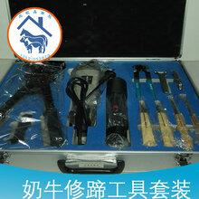 供应奶牛修蹄工具箱修蹄套装图片