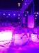 冰雕展制作出租蜂巢迷宫机械大象水上闯关设备出租科技展出租