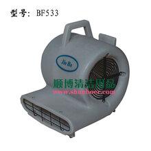 供应洁霸BF533三速强力吹干机1000W地面吹干机图片