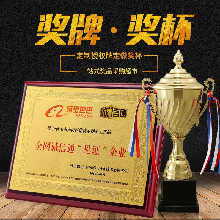 深圳供应厂家直销金箔奖牌定做,先进单位牌匾,木质奖牌定做