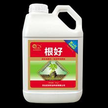 河南洛阳生根养根冲施肥料,壮根冲施肥批发厂子,抗病生根菌剂图片